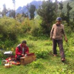 ヒマラヤに森をつくろうプロジェクト 活動報告&今後の計画