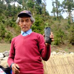 野口健twitter:ヒマラヤでの「森林再生プロジェクト」