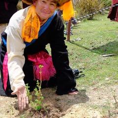 ついにネパール奥地で植栽開始!!