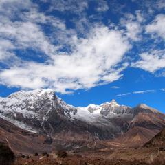 ネパール出張レポートVol.3 森づくり