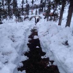 報告:サマ村に大雪が降る