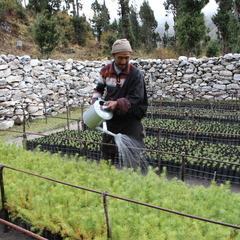 ついにネパール奥地で植栽開始!其の2