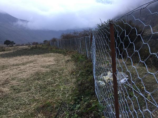 Mesh Wire Fence 5.jpg