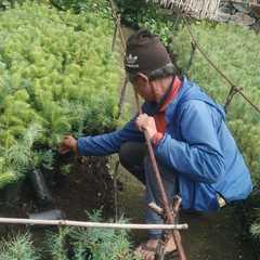 サマ村、森林プロジェクトのフェンス工事が終了しました